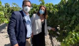 La consejera de Agricultura destaca el proyecto de vitivinicultura circular que estudia el uso del alga asiática para reducir el uso de fitosanitarios