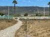 La delegación de Medio Ambiente de La Línea confirma el inicio de los trabajos de cerramiento de Arroyo Negro